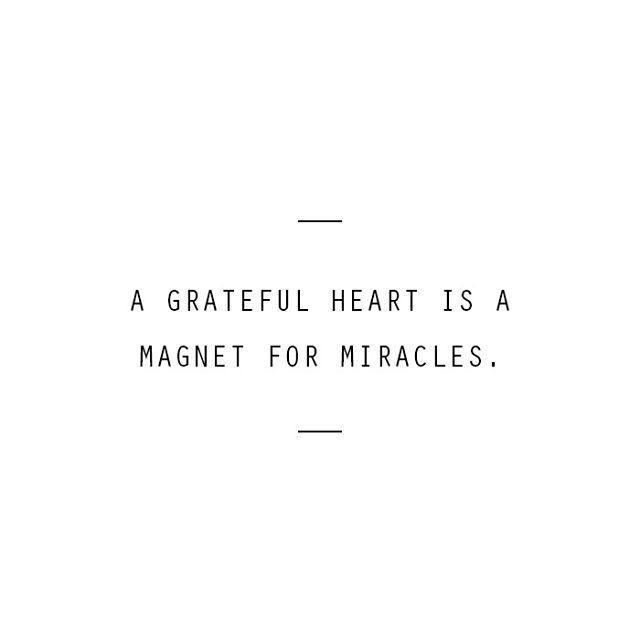 Life Lately Plus 7 Things I'm Grateful For